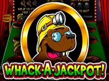 Выбей Джекпот — азартная игра на сайте